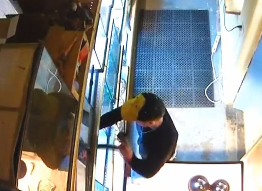 Man Caught On Camera In Pet Store Shoving Python Down Pants