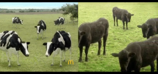McDonald's Accused Of Copying Animator's Work For Ad Featuring Dancing Cows