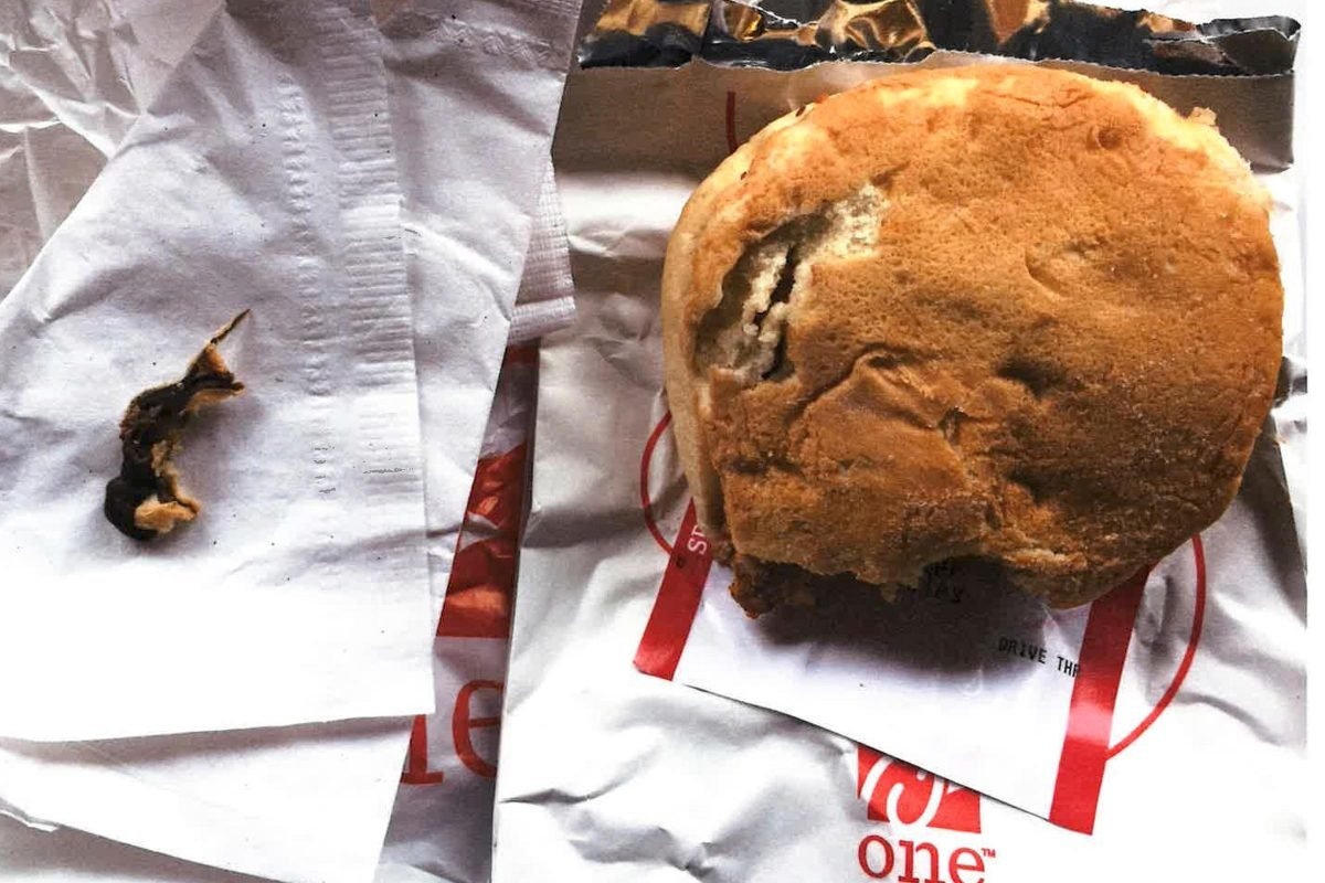 Chick-Fil-A Customer Claims Her Chicken Sandwich Had A Dead Mouse Baked Into The Bun