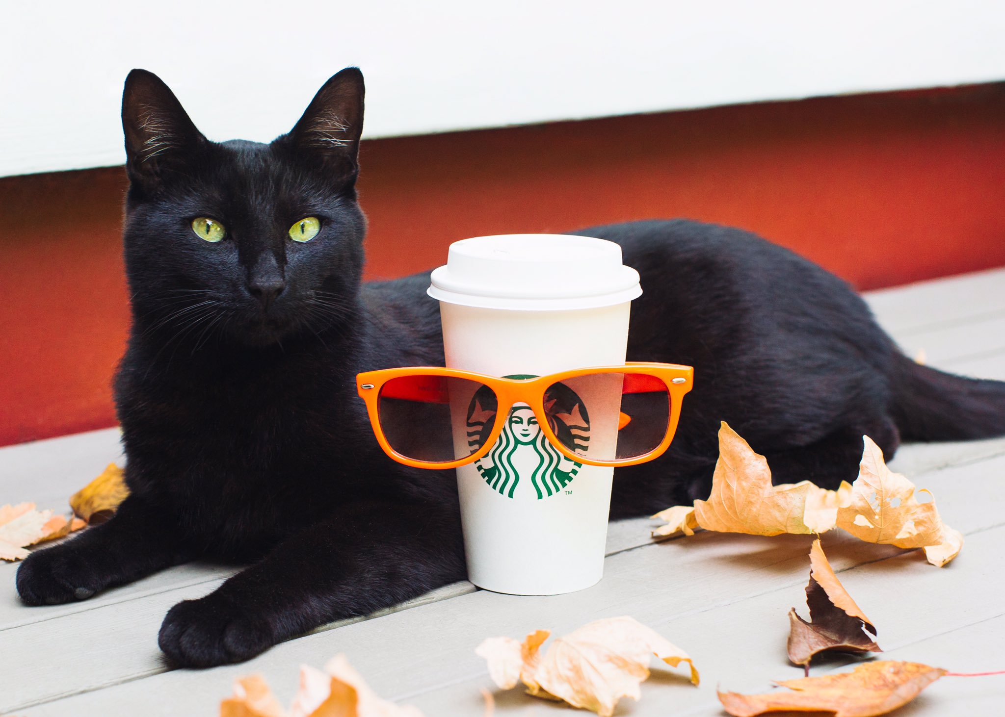 The Starbucks Pumpkin Spice Latte Doesn't Really Come Back Earlier Every Year